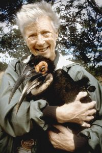 Ann Turner, founder of the Ground Hornbill Project, with one of her birds.