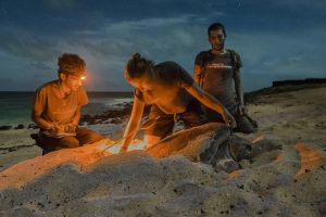 """Members of the """"Projeto Biodiversidade"""" during their nightly work on a Turtel Beach collecting datas from arriving leatherback-turtels."""